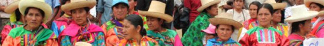 Lucha Indígena